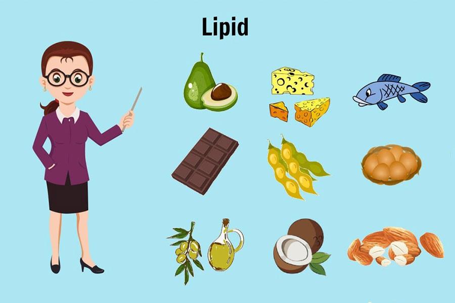 Chất Béo Lipid