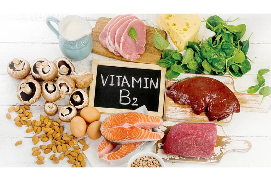 Vitamin B2 điều hòa sự tiết nhờn của tuyến bã