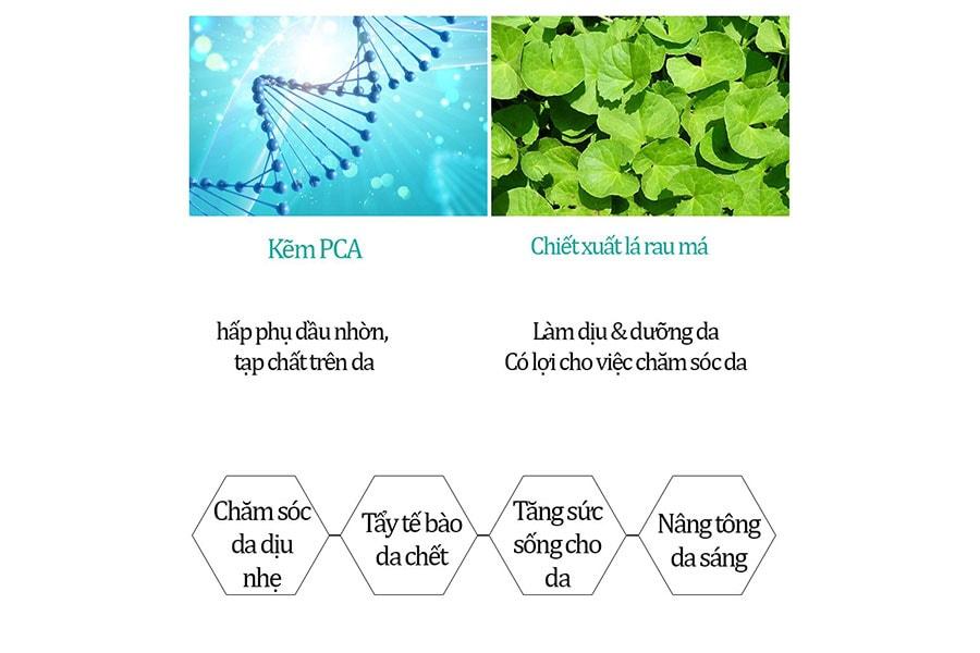 Các thành phần từ ZinC (kẽm) và lá rau má